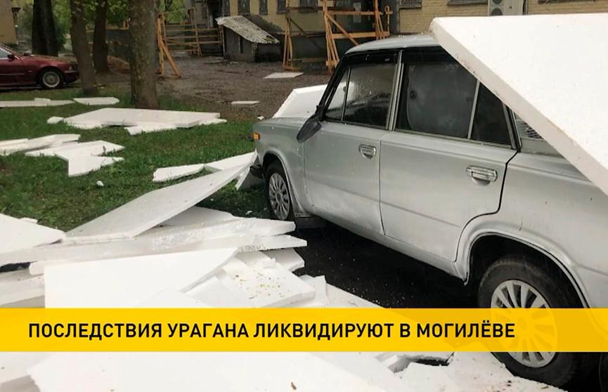 Непогода в Беларуси: поваленные деревья, помятые автомобили