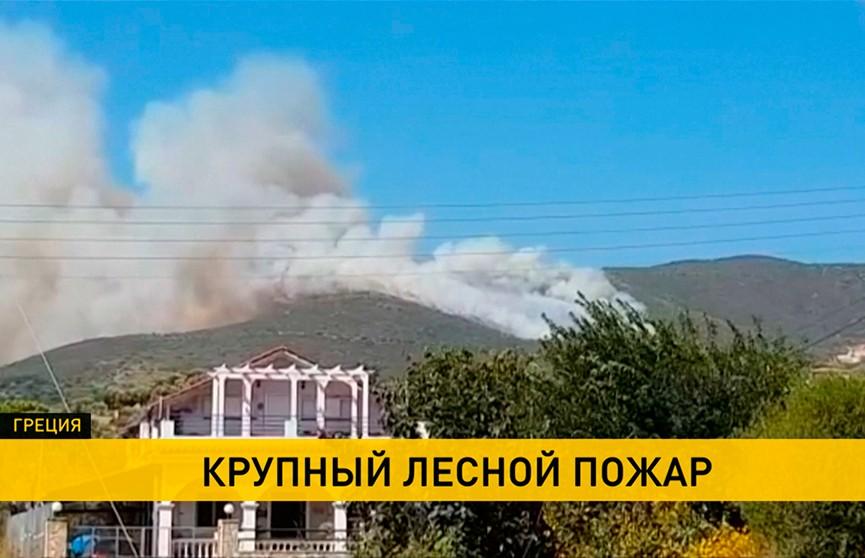 Лесные пожары бушуют на греческом острове Закинтос