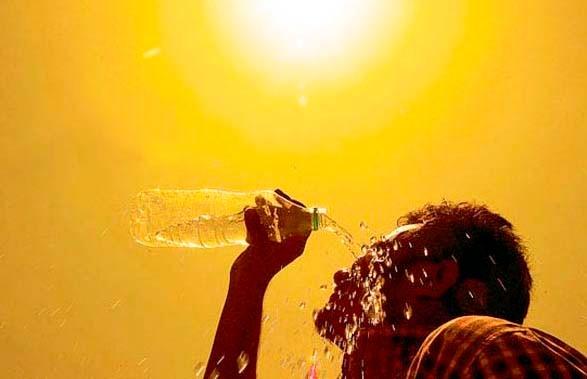 2019 год стал самым жарким за всю историю Европы