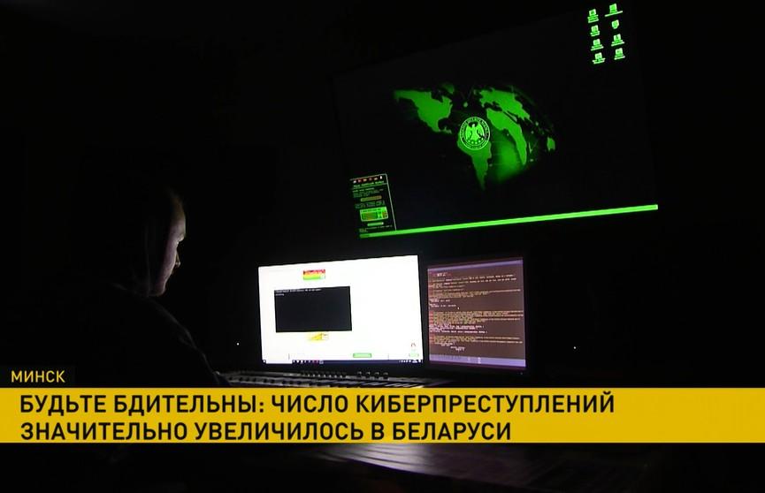 Будьте бдительны: число киберпреступлений значительно увеличилось в Беларуси