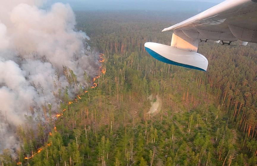 К борьбе с пожарами в Сибири подключилась авиация