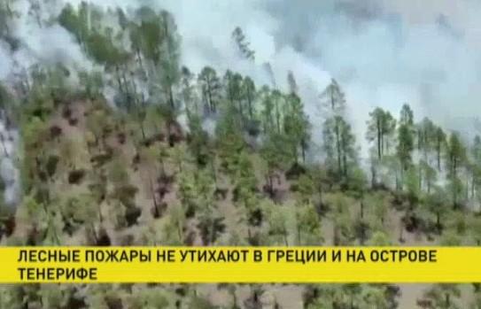 Лесные пожары не утихают в Греции и на острове Тенерифе