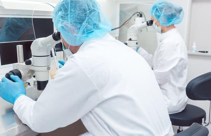 В США ученые напечатали первую «живую аневризму» – на ней можно тестировать методы лечения