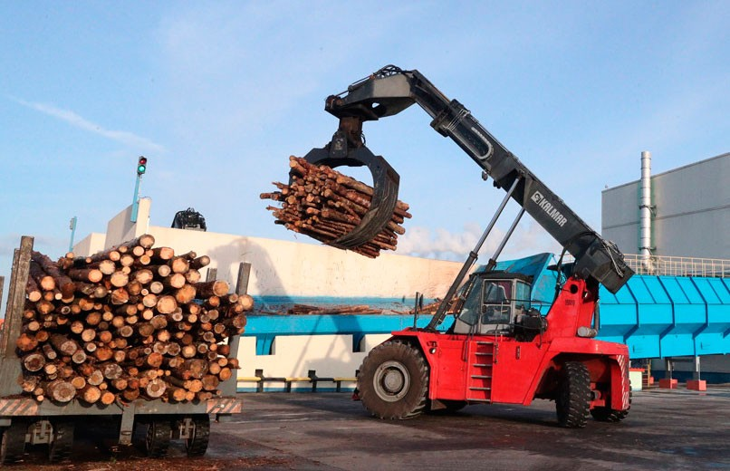 Лукашенко о работе Светлогорского ЦКК: проблему доставки балансовой древесины нужно решить в этом году