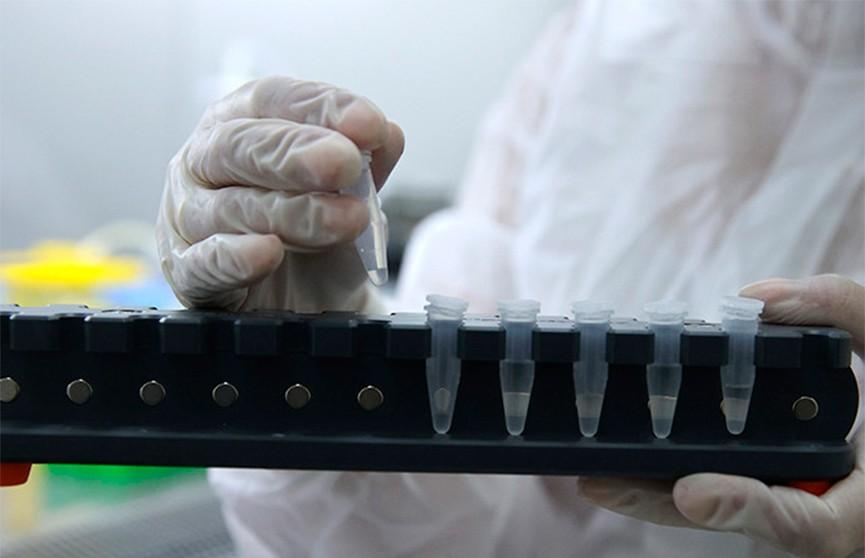 Индия установила мировой рекорд по числу заражений COVID-19: 314 тыс. новых случаев за сутки