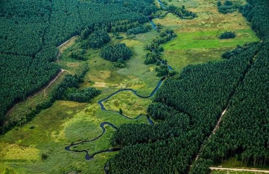 Изменятся границы Брестской, Минской и Гродненской области
