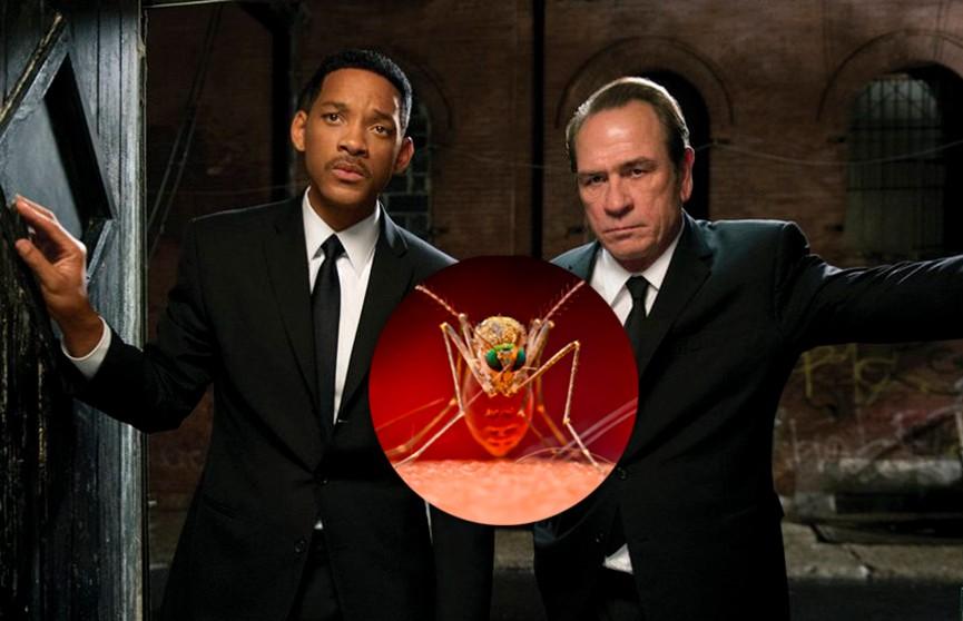 Типы людей, которых комары кусают чаще всего
