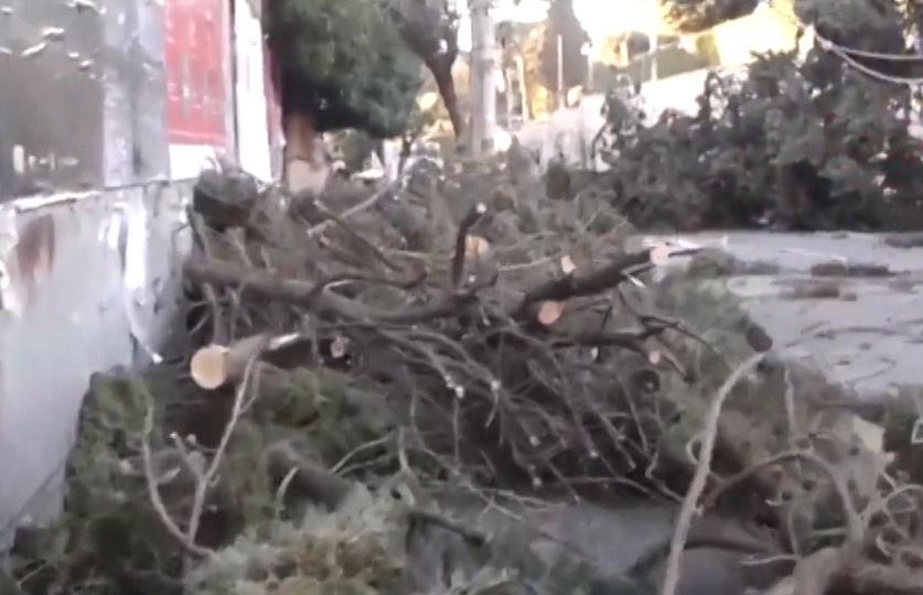 Непогода в Италии: в результате ливней и ветра погибли шесть человек
