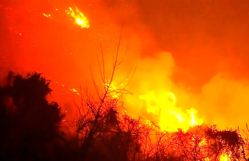Лесные пожары в Чили выходят из-под контроля: пламя уничтожило более 80 домов