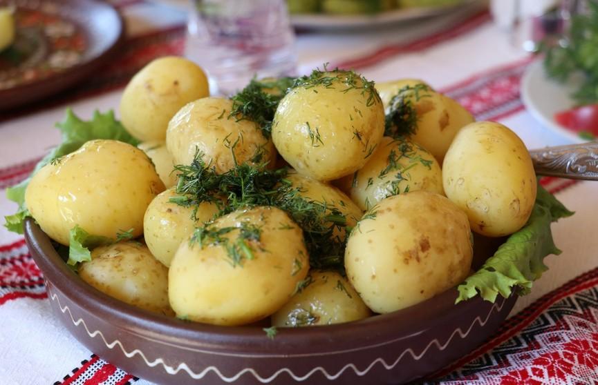 Названа серьезная ошибка при варке картофеля