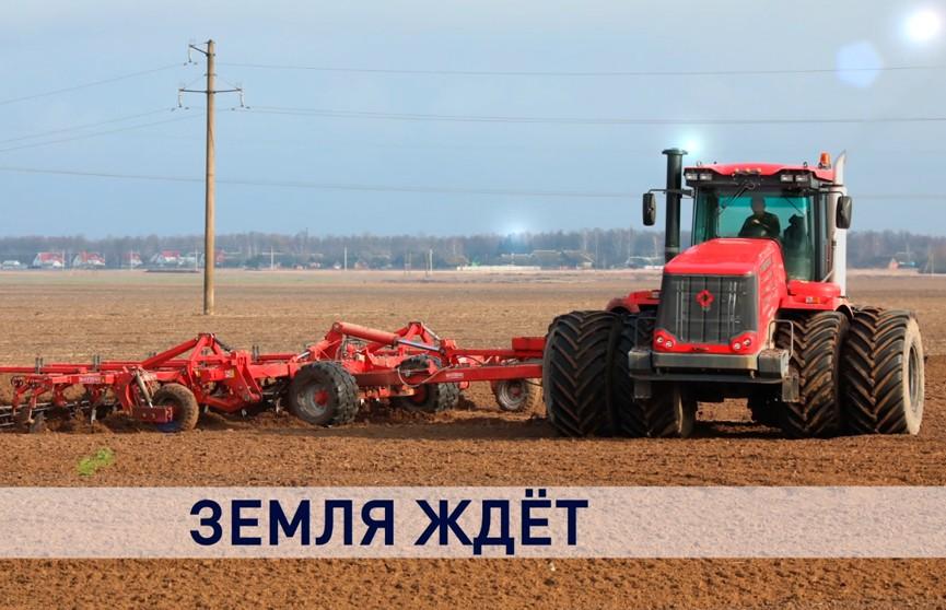 В Минсельхозпроде планируют завершить сев ранних яровых зерновых и зернобобовых культур до 10 апреля