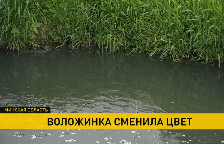 Вода сменила цвет и источает едкий запах. В чём причина экологического бедствия на реке Воложинке?