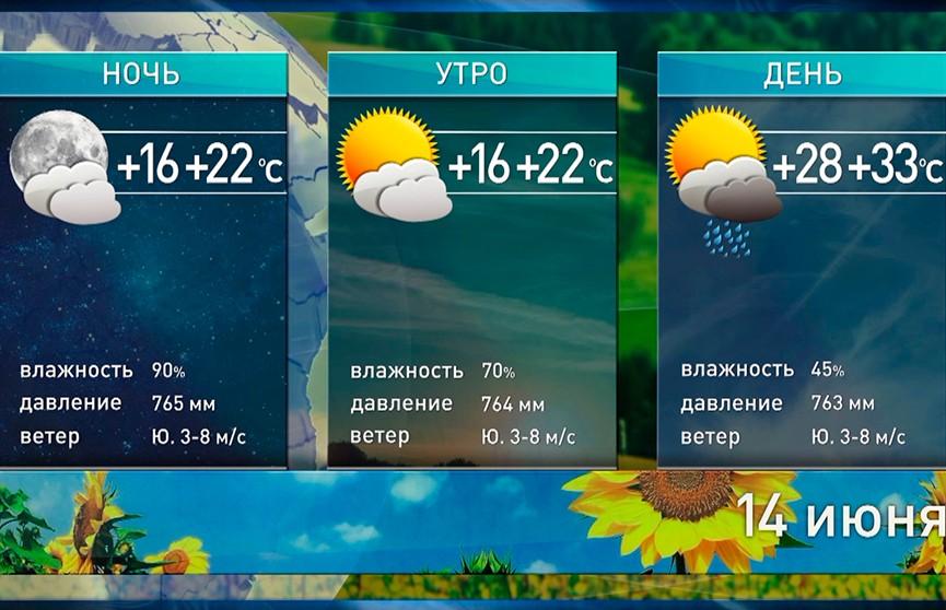 Жара не сдаёт позиций: прогноз погоды на 14 июня