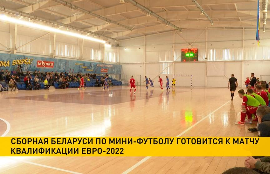 Сборная Беларуси по мини-футболу готовится к матчу квалификации чемпионата Европы с командой Венгрии