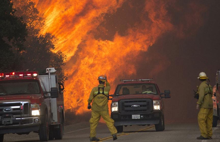 Число жертв лесных пожаров в Калифорнии увеличилось до 84