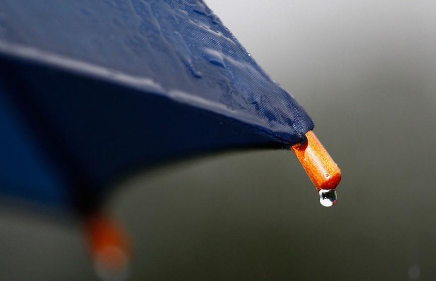 Синоптики прогнозируют дожди и грозы в Беларуси на 14 июня