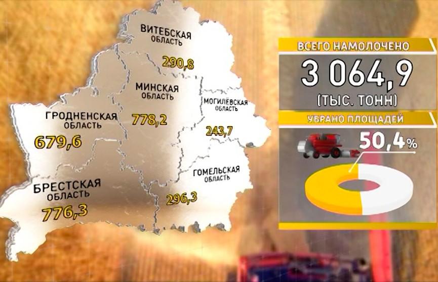 Уборочная кампания-2018: Минская область лидирует по намолоту зерна