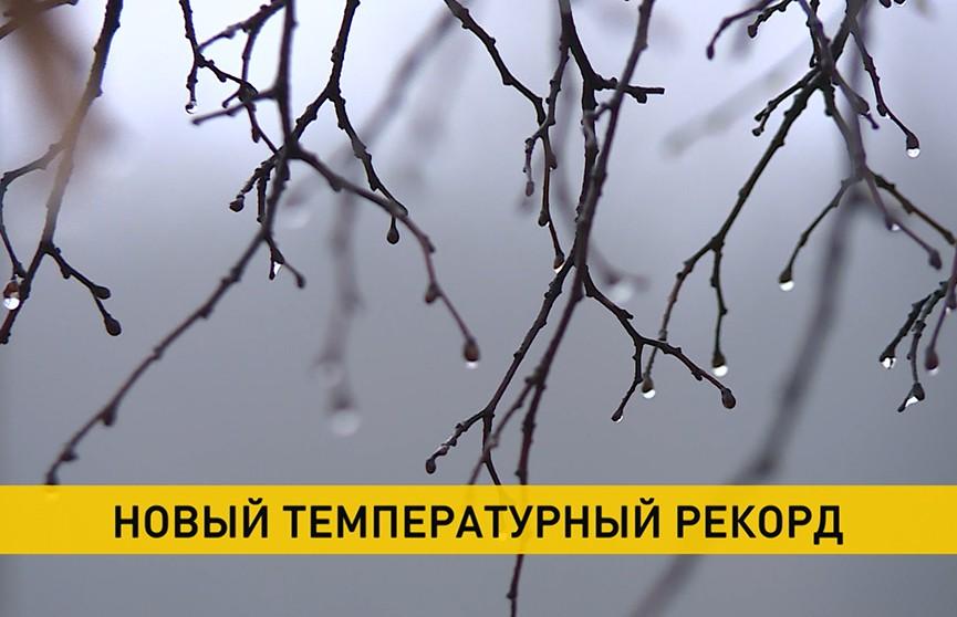 Декабрь обновляет температурные максимумы по всей Беларуси