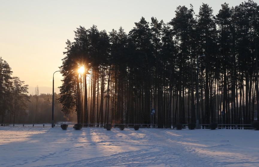 Осадки, усиление ветра и легкое похолодание: прогноз погоды на 27 февраля