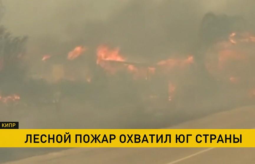 Страшный лесной пожар бушует на Кипре: жертвами стали четыре человека