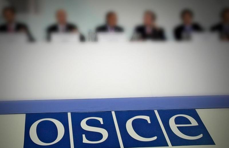 Белорусская парламентская делегация примет участие в заседании ПА ОБСЕ в Вене