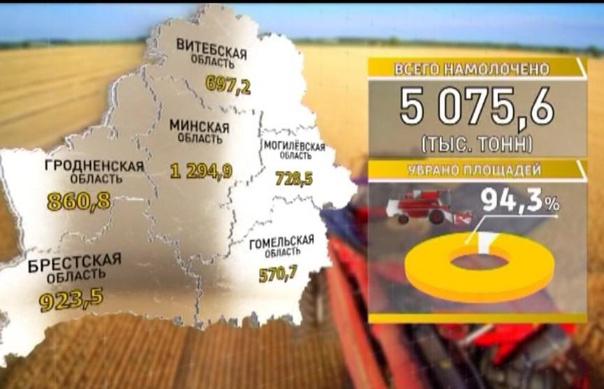 Белорусские аграрии завершают уборку зерновых