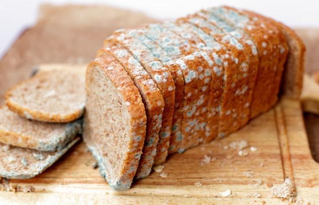 14 заключённых насмерть отравились хлебом в Таджикистане