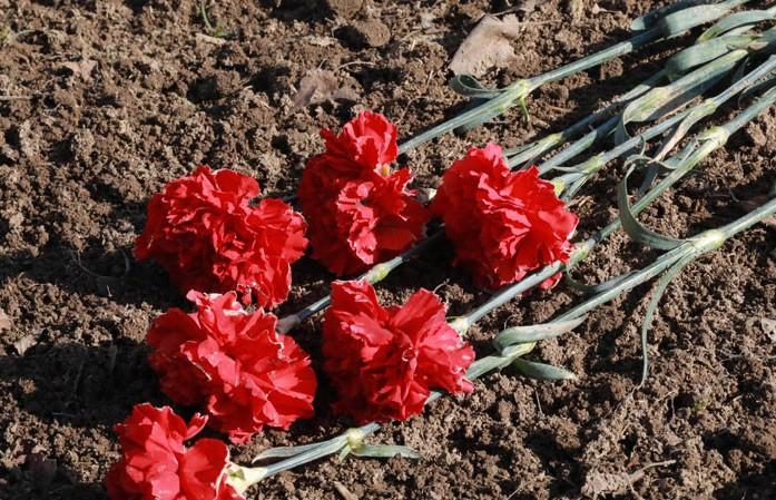 На Кургане Дружбы возложат цветы героям Великой Отечественной войны из Беларуси, России и Латвии