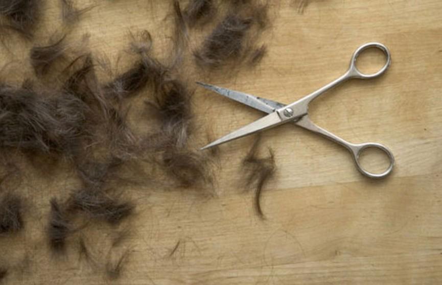 Мужчина побрил жену налысо из-за найденного в еде волоса