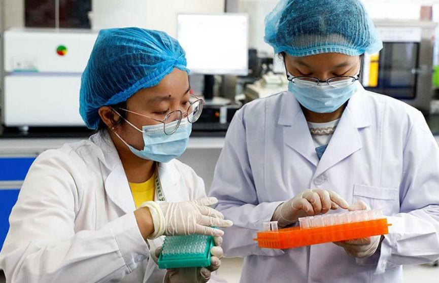 В Китае нашли штамм свиного гриппа, способный вызвать пандемию