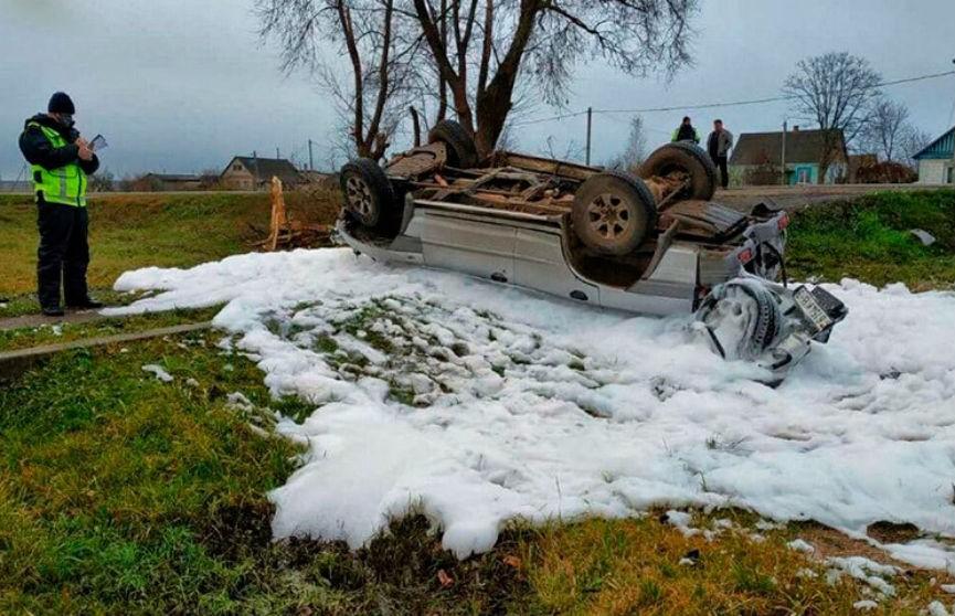 Автомобиль врезался в дерево в Гомельской области: погиб человек