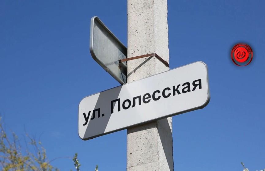 НАПАЛО НА ЖЕНЩИНУ. Опасное животное гуляет возле Минска (ВИДЕО)