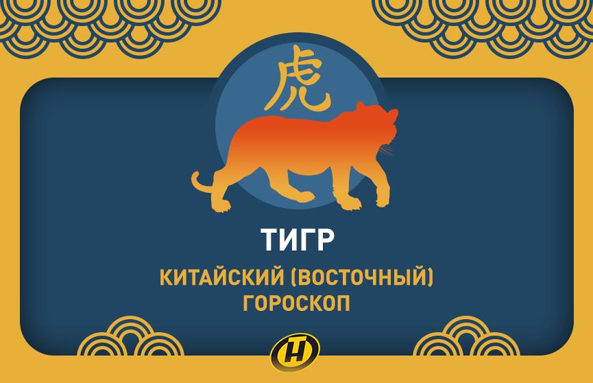 Тигр: Китайский (Восточный) гороскоп, характеристика знака, совместимость