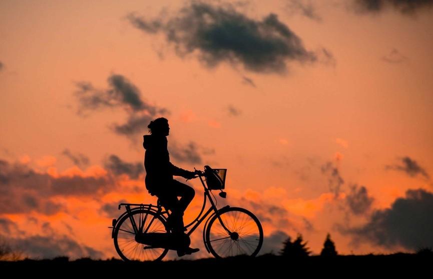 Как выбрать велосипед и правильно на нём ездить, чтобы не навредить здоровью