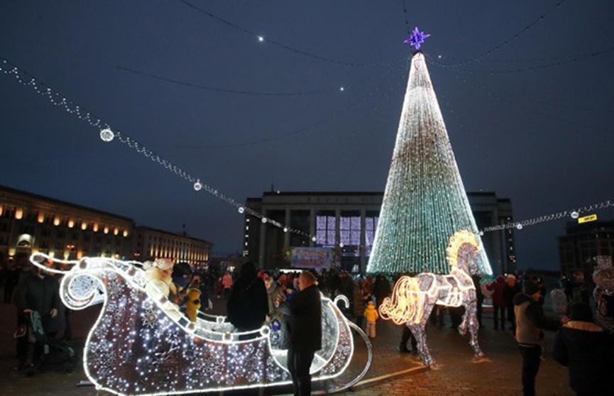 Главная ёлка страны засияла огнями в Минске