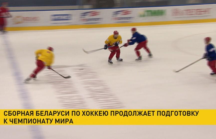 Белорусские хоккеисты готовятся к ЧМ в первом дивизионе. В команде есть пополнения
