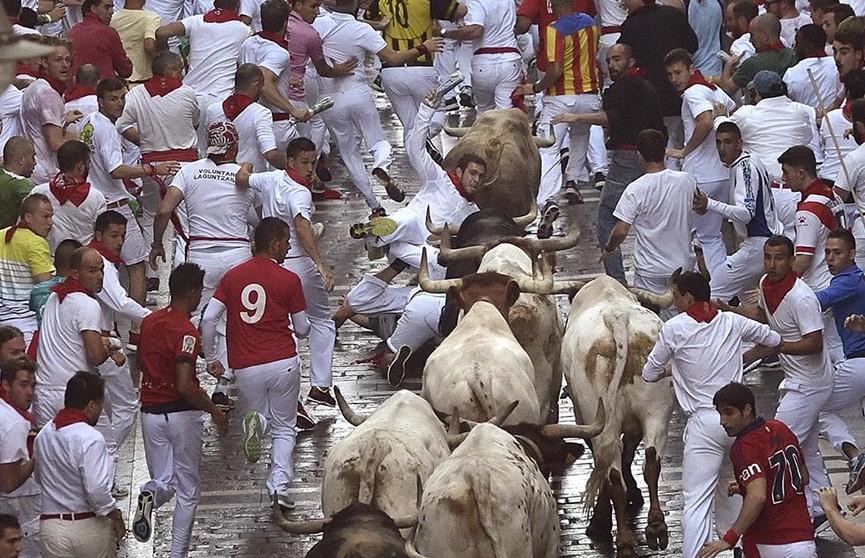 Четыре человека пострадали во время забега с быками в Испании
