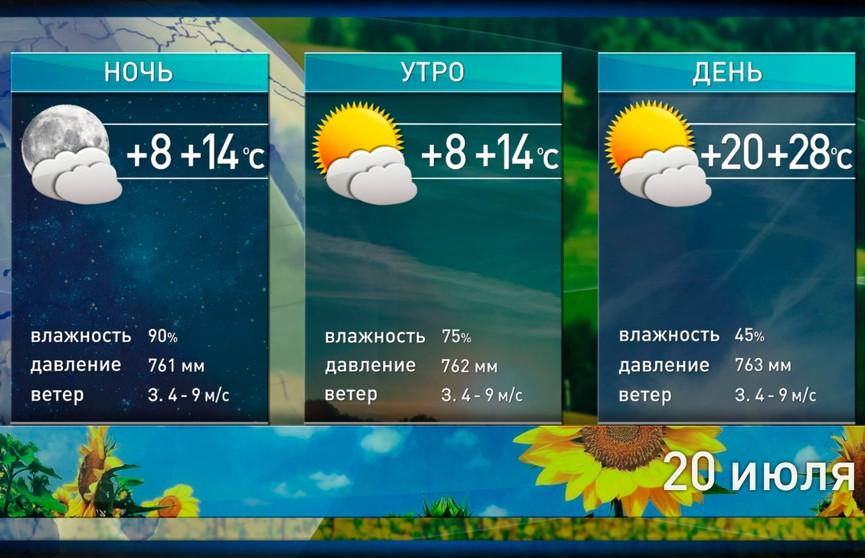 Солнце и до +28°С: прогноз погоды на 20 июля