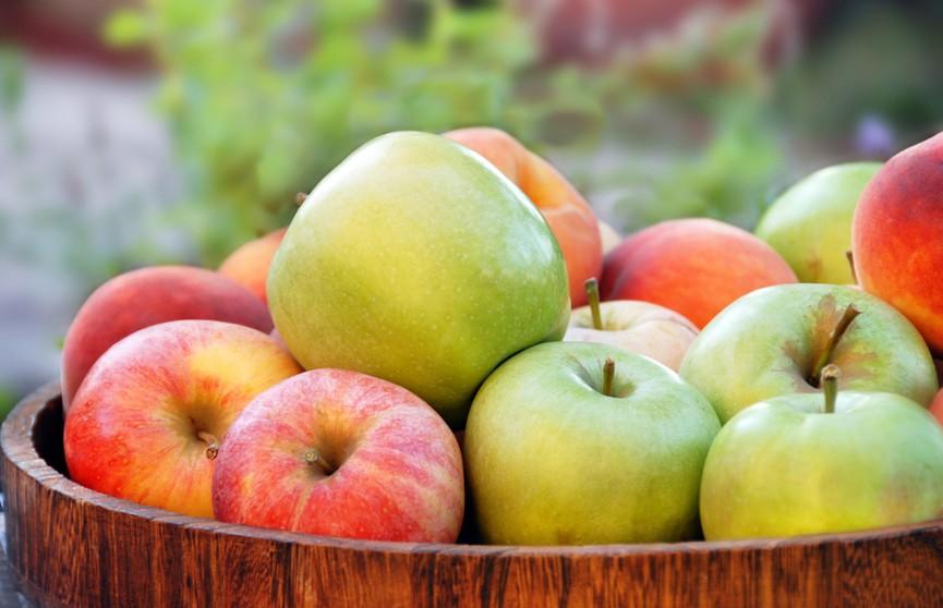 «Если червивое, значит – хорошее». Врач рассказала, какие яблоки можно есть и сколько