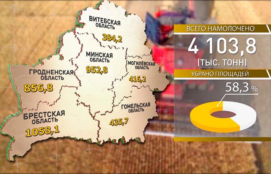 Белорусские аграрии намолотили более 4 млн тонн зерна