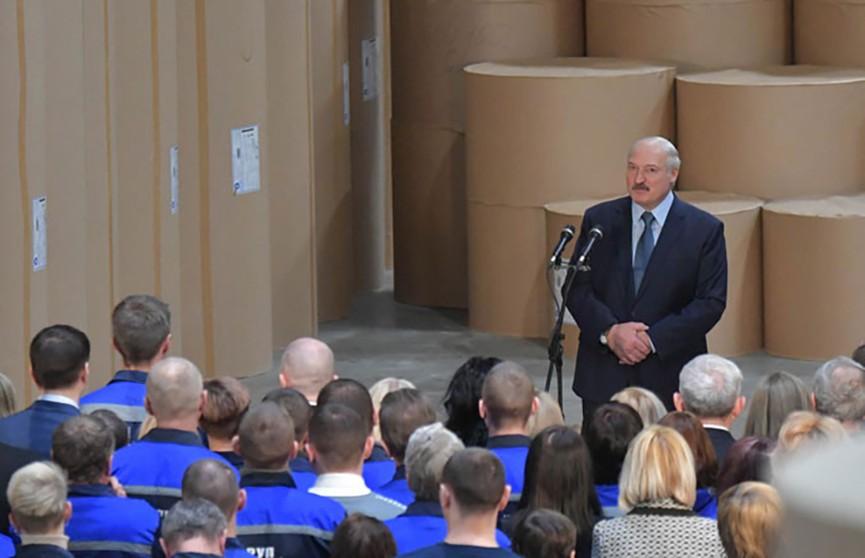 Александр Лукашенко призвал развивать частные подворья на селе для обеспечения жизни детям и внукам