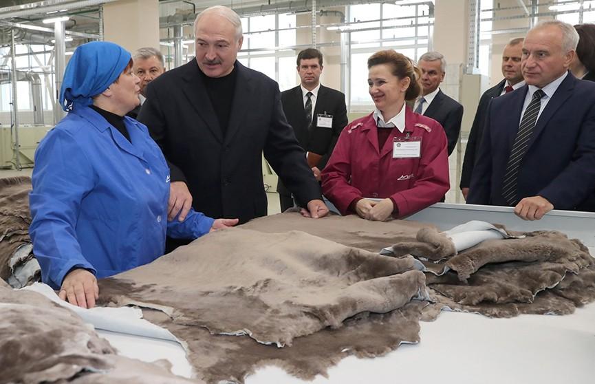 Александр Лукашенко посетил Витебский меховой комбинат