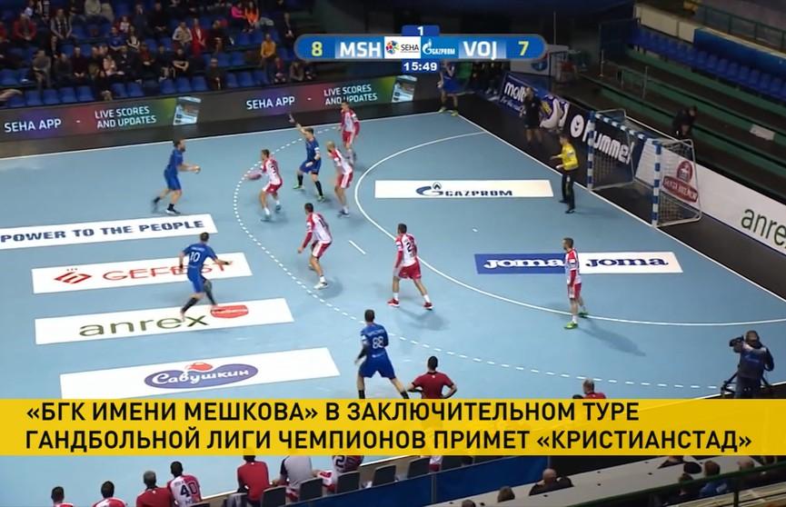 БГК имени Мешкова в заключительном туре гандбольной Лиги чемпионов примет шведский «Кристианстад»