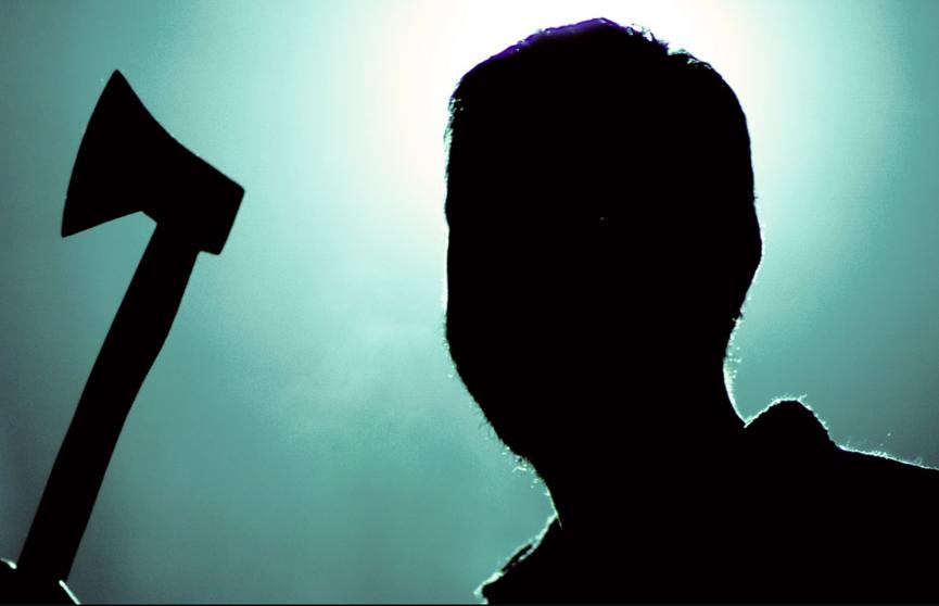 Мужчина угрожал топором сожительнице в Пружанском районе: милиции пришлось стрелять