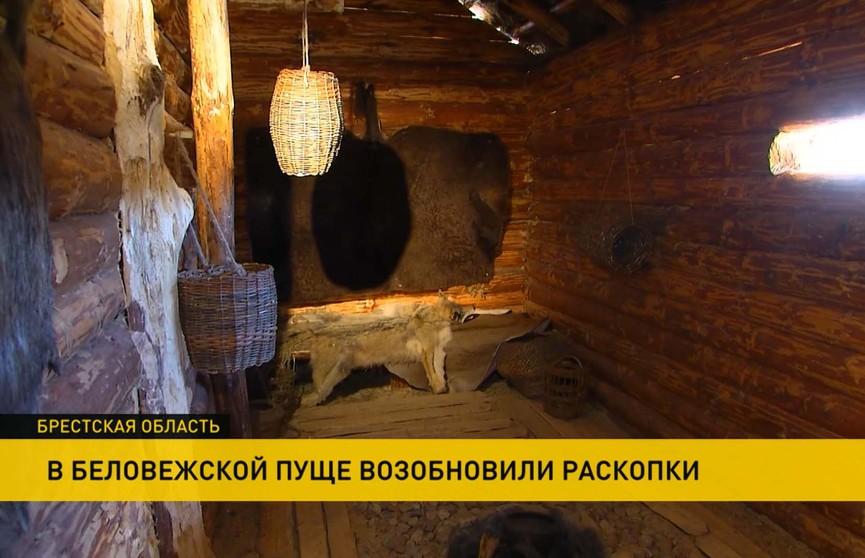 Привет из каменного века: в Беловежской пуще идут масштабные раскопки