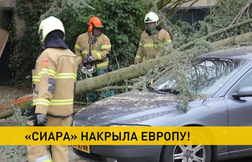 Шторм «Сиара»: какой след стихия оставит в Беларуси?