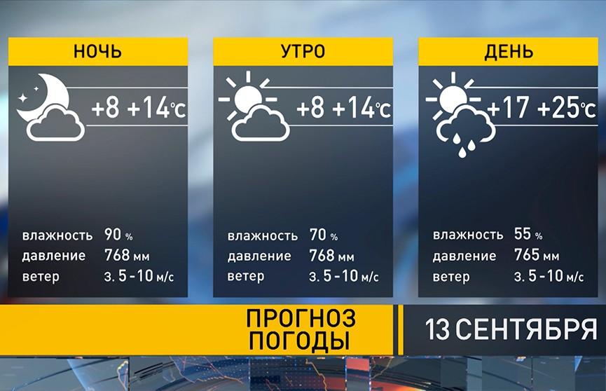 Похолодание уже на пороге: прогноз погоды на 13 сентября