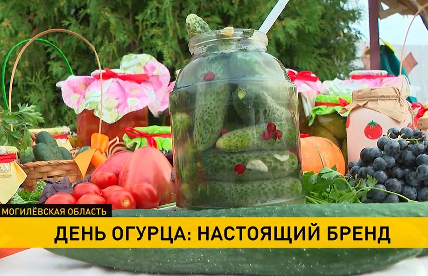 Юбилейный День огурца отмечают в Шклове: какие угощения и развлечения предлагает посетителям фестиваль