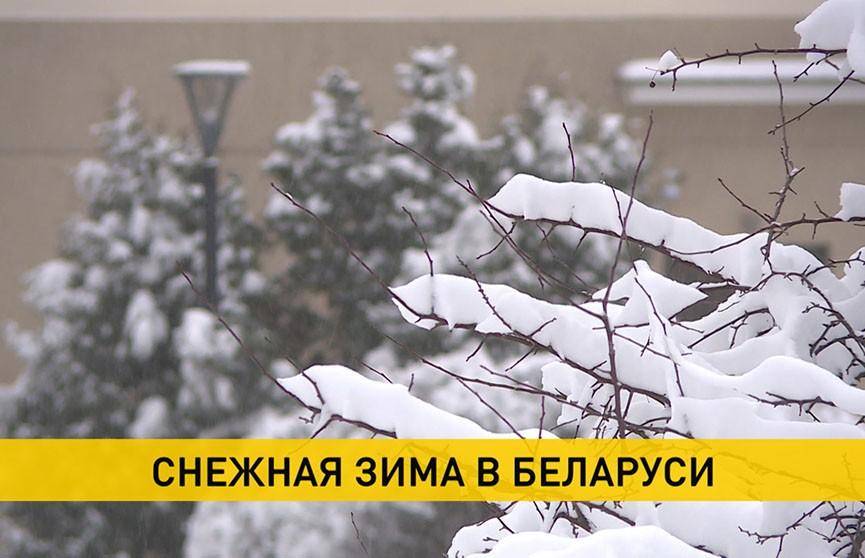 За сутки в Беларуси выпала месячная норма осадков