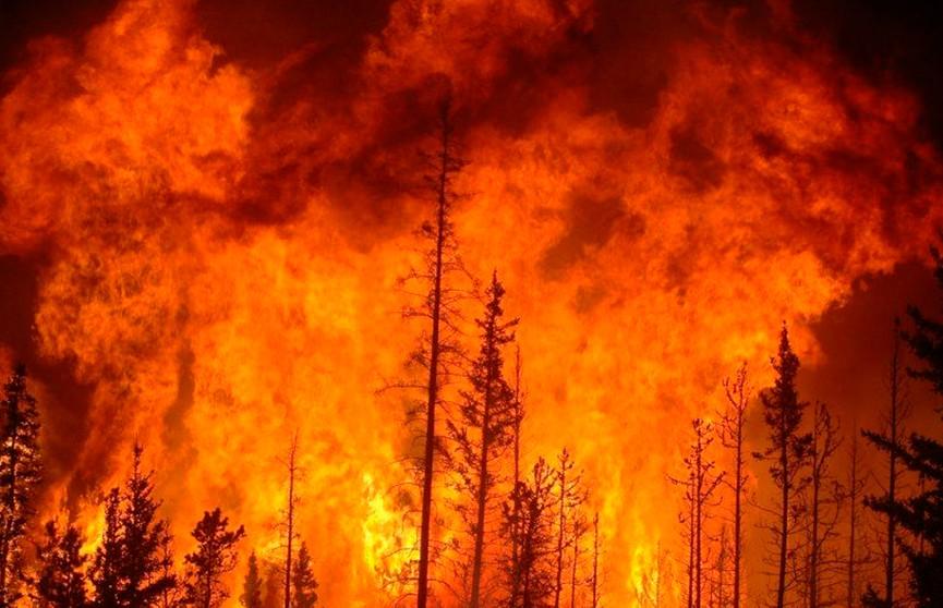Сначала наводнение, а следом пожары. В Иркутской области России введён режим ЧС
